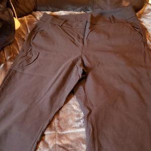 Lane Bryant bootcut pants
